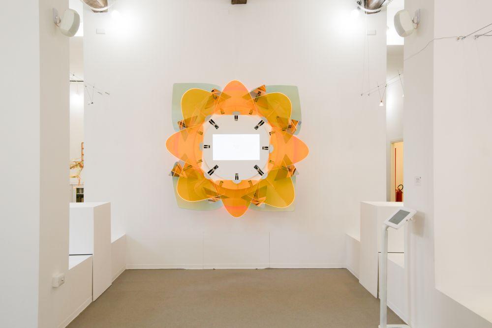 Andrea Prandi, L'Anima in Fiore, installazione videoart, vista frontale 215x215, cm. 2017